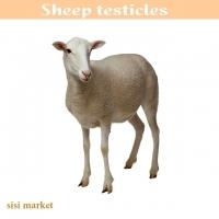 دنبلان گوسفندی